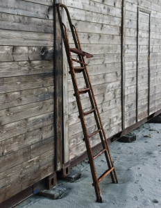 1326879_ladder_rungs_.jpg