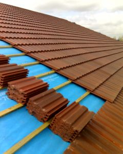 561775_a_roof.jpg