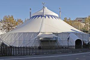 circo-1-915783-m.jpg