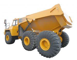 dumper-3-739942-m.jpg