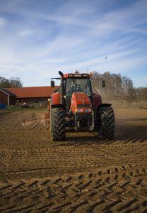 farmer-1179034-m.jpg